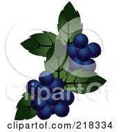 Royalty Free RF Clipart Illustration Of Blueberries And Green Leaves