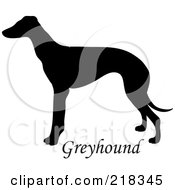Royalty Free RF Clipart Illustration Of A Black Silhouetted Greyhound And Text by Pams Clipart