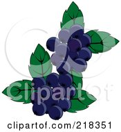 Royalty Free RF Clipart Illustration Of Blueberries And Leaves