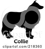 Royalty Free RF Clipart Illustration Of A Black Silhouetted Collie Dog With Text by Pams Clipart