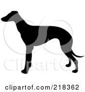 Royalty Free RF Clipart Illustration Of A Black Silhouetted Greyhound Dog In Profile by Pams Clipart