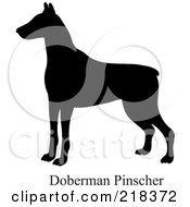 Royalty Free RF Clipart Illustration Of A Black Silhouetted Doberman Pinscher And Text
