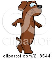 Royalty Free RF Clipart Illustration Of A Dachshund Walking Upright