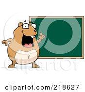 Hamster Teacher By A Chalk Board