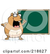 Royalty Free RF Clipart Illustration Of A Hamster Teacher By A Chalk Board