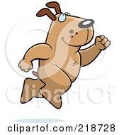 Big Dog Leaping by Cory Thoman