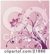 Clipart Picture Illustration Of White And Purple Vines With Pink Flowers Over A Gradient Background