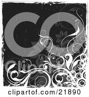 Clipart Picture Illustration Of A White Curly Vine With Circles And Gray Flowers Over A Black Grunge Background