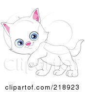 Cute White Kitten Walking And Glancing