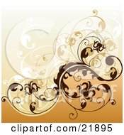 Clipart Picture Illustration Of Brown And White Floral Vines Curling Over A Gradient Orange Background