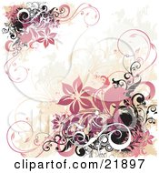 Clipart Picture Illustration Of Corners Of Pink Clustered Flowers With Black And White Vines And Circles Over A Grunge Background