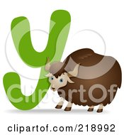 Royalty Free RF Clipart Illustration Of An Animal Alphabet With A Yak By A Y by BNP Design Studio