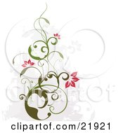 Clipart Picture Illustration Of A Green Vine Plant With Scrolls And Pink Blossoms Over A Faded Gray And White Background