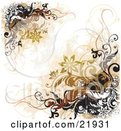 Clipart Picture Illustration Of Corners Of White Black And Brown Vines And Flowers Over A White Background