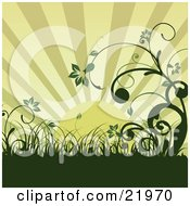 Clipart Picture Illustration Of A Green Morning Sunrise Over An Organic Wildflower And Grass Landscape by OnFocusMedia