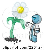 Royalty Free RF Clipart Illustration Of A Denim Blue Man Scientist Admiring A Giant White Daisy Flower