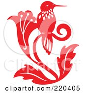 Red Hummingbird With White Designs Sitting On A Flower