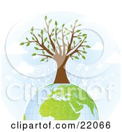 Clipart Illustration Picture Of A Strong And Healthy Tree With White Flowers Growing On Top Of The Earth by OnFocusMedia