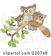 Mother And Baby Owls Perched On A Branch