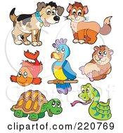 Digital Collage Of Cute Pet Animals