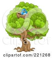 Blue Bird In A Nest In A Big Tree