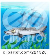 Royalty Free RF Clipart Illustration Of A Mean Barracuda Fish By A Sunken Ship by visekart