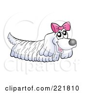 Royalty Free RF Clipart Illustration Of A Hairy White Dog Wearing A Pink Bow