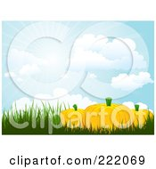 Royalty Free RF Clipart Illustration Of 3d Pumpkins In Tall Grasses Under A Sky With Rays Of Light by KJ Pargeter