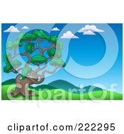 Royalty Free RF Clipart Illustration Of A Tall Pine Tree In A Hilly Landscape