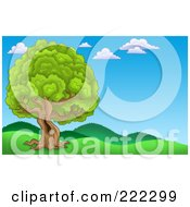Royalty Free RF Clipart Illustration Of A Lush Tree With A Hole In The Trunk In A Hilly Landscape by visekart
