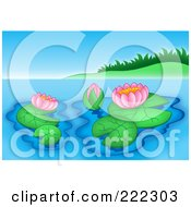 Royalty Free RF Clipart Illustration Of Lily Pads And Pink Lotus Flowers On Still Water By A Grassy Mound