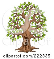 Royalty Free RF Clipart Illustration Of A Tall Oak Tree With A Hole In The Trunk