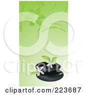 Royalty Free RF Clipart Illustration Of A Business Card Design Of Spa Stones And Frangipani Flowers On Green