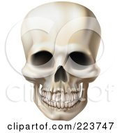 Royalty Free RF Clipart Illustration Of A Creepy Human Skull With A Clenched Jaw
