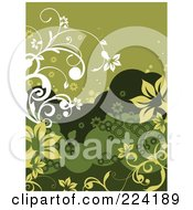 Green And White Floral Background