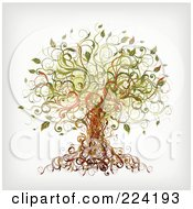 Royalty Free RF Clipart Illustration Of A Vine Tree
