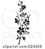 Vertical Border Of Black And White Blossoms - 1