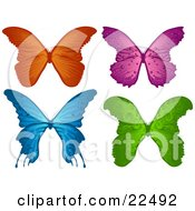 Clipart Illustration Of A Collection Of Orange Purple Blue And Green Elegant Butterflies On A White Background by Tonis Pan
