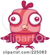 Red Bird With Big Eyes