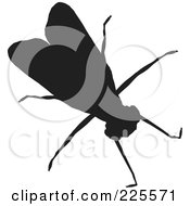 Royalty Free RF Clipart Illustration Of A Silhouetted Black House Fly