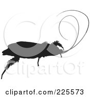Royalty Free RF Clipart Illustration Of A Silhouetted Black Cockroach 1