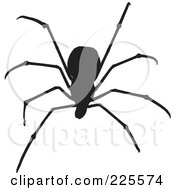 Royalty Free RF Clipart Illustration Of A Silhouetted Black Spider