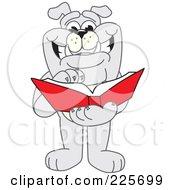 Gray Bulldog Mascot Thumbing Through A Book