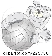 Royalty Free RF Clipart Illustration Of A Gray Bulldog Mascot Reaching Up And Grabbing A Volleyball