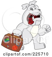 Gray Bulldog Mascot Walking And Carrying A Suitcase