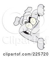 Gray Bulldog Mascot Smiling Around A Blank Sign
