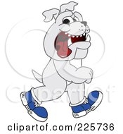 Gray Bulldog Mascot Walking Upright And Wearing Shoes