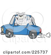 Gray Bulldog Mascot Waving And Driving A Blue Car