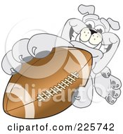 Royalty Free RF Clipart Illustration Of A Gray Bulldog Mascot Reaching Up And Grabbing An American Football by Toons4Biz