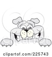 Royalty Free RF Clipart Illustration Of A Gray Bulldog Mascot Smiling Over A Blank Sign